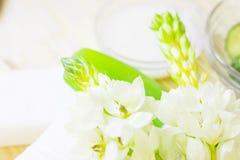 Ogórka domowy zdrój i włosianej opieki pojęcie Pokrojony ogórek, butelki olej, grean mydło, łazienka ręcznik Słomy lekki tło obrazy stock