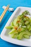 ogórkowa japońska sałatka Zdjęcia Stock