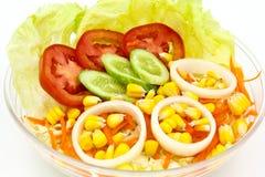 ogórkowej świeżej sałaty mieszanki sałatkowy pomidorowy warzywo Obrazy Stock