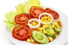 ogórkowej świeżej sałaty mieszanki sałatkowy pomidorowy warzywo Fotografia Royalty Free