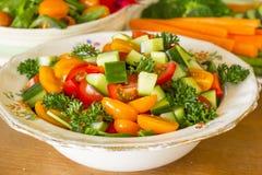 ogórkowej świeżej sałaty mieszanki sałatkowy pomidorowy warzywo Zdjęcia Royalty Free