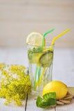 Ogórkowy miękki napój z cytryną Fotografia Stock