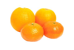 Oganges et fruit de mandarine d'isolement sur le blanc Photos stock