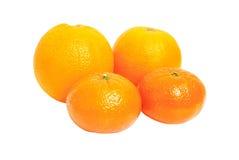 Oganges und Mandarinefrucht getrennt auf Weiß Stockfotos