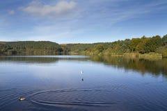 Ogden Wasser West Yorkshire Stockfotografie