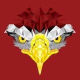 Ogen van Eagle met geometrisch patroon royalty-vrije illustratie
