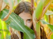 Ogen van jong meisje in graanlabyrint Royalty-vrije Stock Afbeelding