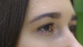 Ogen van jonge vrouwen langzame motie, mooie vrouwelijke donkerbruin knipoogje extreme close-up stock video