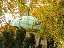 Ogenblikken van de herfst Stock Foto