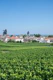 Oger,Champagne Region,France Royalty Free Stock Photo