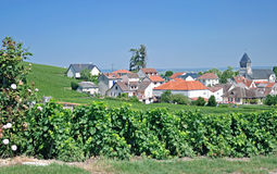 Oger,Champagne region,France Royalty Free Stock Photos