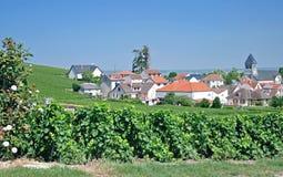 Oger, Champagne Region, Francia Fotos de archivo libres de regalías