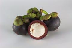 Oggetti freschi della frutta del mangostano isolati Immagine Stock Libera da Diritti