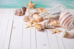 Oggetti marini su fondo di legno Immagini Stock Libere da Diritti