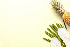 Oggetti posti piani di viaggio: ananas, pantofole fresche della spiaggia e foglia di palma trovantesi sul fondo giallo Posto per  fotografia stock libera da diritti