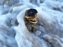Oggetto in acqua. Fotografia Stock Libera da Diritti