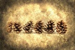 Oggetto del pino Cones Fotografia Stock Libera da Diritti