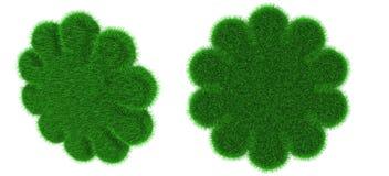 Oggetto a forma di del fiore erboso Fotografia Stock