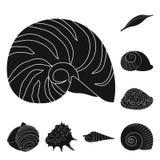 Oggetto isolato del simbolo dell'oceano e della natura Metta del simbolo di riserva del mollusco e della natura per il web illustrazione vettoriale
