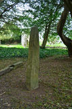 Ogham Standing Stone in the Shade of a Tree. In Ireland Royalty Free Stock Photos