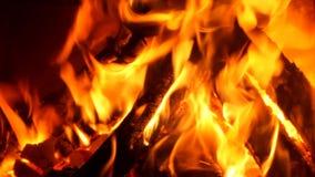 Ogień zbiory