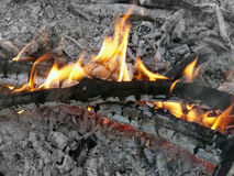 Ogień i popióły Zdjęcia Royalty Free