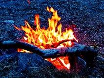 Ogień jest co pokrywa się z ewolucją mężczyzna Fotografia Stock