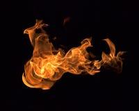 Ogień płonie kolekcję Zdjęcia Royalty Free