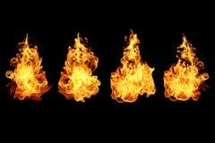 Ogień płonie kolekcję odizolowywającą na czerni Fotografia Royalty Free