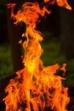 Ogień płonie na ciemnym tle Zdjęcia Royalty Free