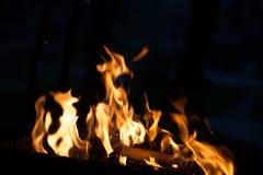 ogień Pojęcie natura Obraz Stock