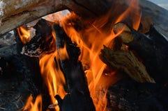 Ogień rozogniający na śniegu Fotografia Stock