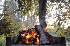 Ogień w grillu fotografia stock