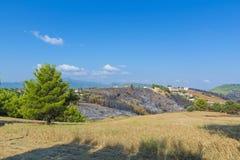Ogień w północnym wschodzie Attica, Grecja Fotografia Stock
