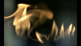 Ogień zapala w wygodzie benzynowa kuchenka zbiory