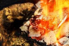 ogień Zbliżenie palowy drewniany palenie z płomieniami Obraz Stock
