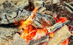 ogień Zbliżenie palowy drewniany palenie z płomieniami Fotografia Stock