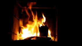 Ogień zbiory wideo