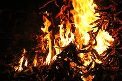 ogień Obrazy Royalty Free