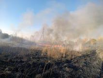 Ogień w meadowt Zdjęcia Royalty Free
