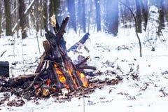 Ogień w zima lesie Obrazy Royalty Free