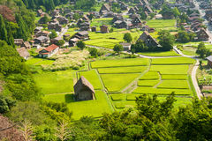 Ogimachi village Royalty Free Stock Photo
