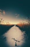 Oglądać długiego spaceru puszek morze Zdjęcie Royalty Free
