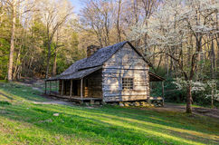 Ogle Place, Roaring Fork Motor Trail, Great Smoky Mountains. Spring time at the old Bud Ogle cabin along the Roaring Fork Motor Nature Train in the Great Smoky Royalty Free Stock Photos