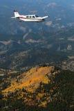 Ogólny lotnictwo - Beechcraft żyła złota Obraz Stock