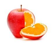 OGM Appleorange photographie stock libre de droits