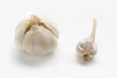 OGM contra el ajo orgánico Imagen de archivo libre de regalías