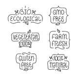 OGM et gluten gratuits, bio écologique, naturel Images libres de droits