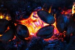 Ogniska backgroung abstrakcjonistyczny wzór płonący spathe koks obraz royalty free
