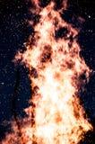 ognisko obrazy royalty free